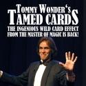 Tamed Cards - Tommy Wonder