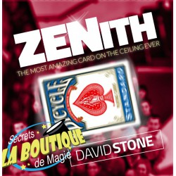 Zenith en français - David Stone
