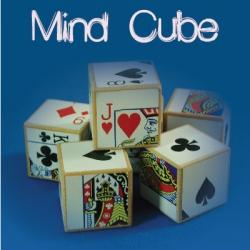 Mind Cube (5)