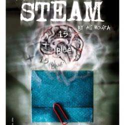 Steam - Ali Nouira (mode d'emploi)