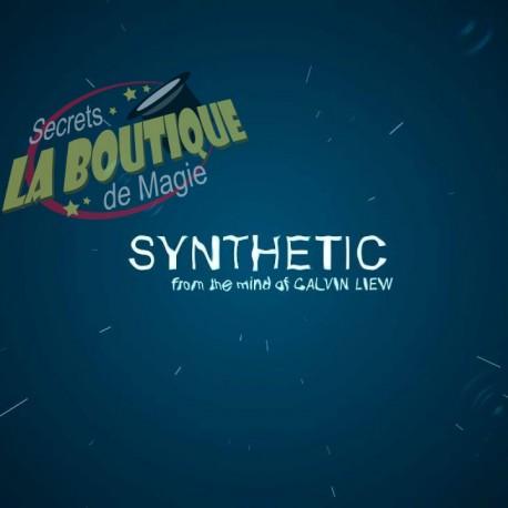Synthetic en français - Téléchargement immédiat