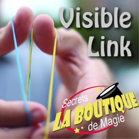 Visible link - 2 versions - Téléchargement immédiat