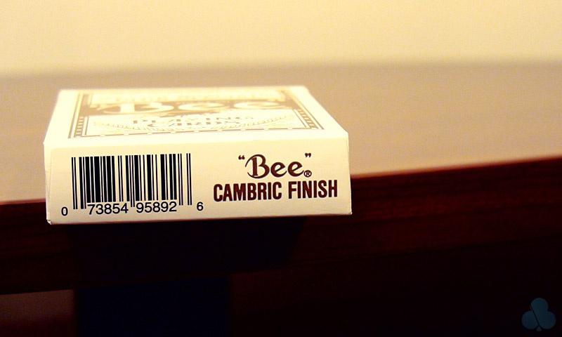 Bee Wynn